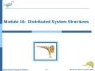 Bài giảng Hệ điều hành nâng cao - Chapter 16: Distributed System Structures