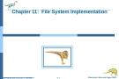 Bài giảng Hệ điều hành nâng cao - Chapter 11: File System Implementation
