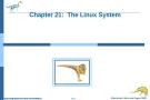 Bài giảng Hệ điều hành nâng cao - Chapter 21: The Linux System