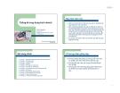 Bài giảng Thống kê ứng dụng kinh doanh - Trần Tuấn Anh