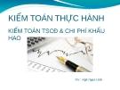 Bài giảng Kiểm toán thực hành: Kiểm toán tài sản cố định và chi phí khấu hao - GV. Ngô Ngọc Linh