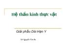 Bài giảng Hệ thần kinh thực vật - TS. Nguyễn Văn Ba