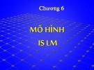 Bài giảng Kinh tế vĩ mô - Chương 6: Mô hình IS LM