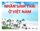 Thuyết trình: Nhãn sinh thái ở Việt Nam