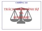Bài giảng Luật Hình sự Việt Nam: Chương VII (tt) - ThS. Trần Đức Thìn