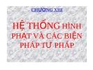 Bài giảng Luật Hình sự Việt Nam: Chương XIII - ThS. Trần Đức Thìn
