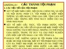 Bài giảng Luật Hình sự Việt Nam: Chương IV - ThS. Trần Đức Thìn