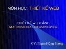 Bài giảng môn học Thiết kế Web - GV. Phạm Hồng Phong