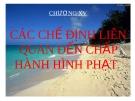 Bài giảng Luật Hình sự Việt Nam: Chương XV - ThS. Trần Đức Thìn