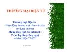 Bài giảng Thương mại điện tử: Phần 1 - Thái Thanh Sơn