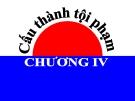 Bài giảng Luật Hình sự Việt Nam: Chương 4 - ThS. Trần Đức Thìn