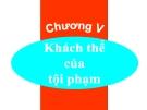 Bài giảng Luật Hình sự Việt Nam: Chương 5 - ThS. Trần Đức Thìn
