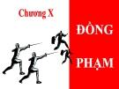 Bài giảng Luật Hình sự Việt Nam: Chương 10 - ThS. Trần Đức Thìn