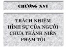 Bài giảng Luật Hình sự Việt Nam: Chương 16 - ThS. Trần Đức Thìn