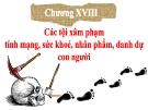 Bài giảng Luật Hình sự Việt Nam: Chương 18 - ThS. Trần Đức Thìn