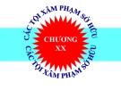 Bài giảng Luật Hình sự Việt Nam: Chương 20 - ThS. Trần Đức Thìn