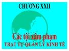 Bài giảng Luật Hình sự Việt Nam: Chương 22 - ThS. Trần Đức Thìn