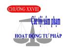 Bài giảng Luật Hình sự Việt Nam: Chương 28 - ThS. Trần Đức Thìn