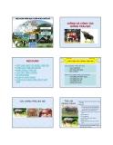 Bài giảng Chăn nuôi trâu bò - Chương 1: Giống và công tác giống trâu bò