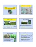 Bài giảng Chăn nuôi trâu bò - Chương 2: Thức ăn và chăn nuôi