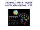Bài giảng Chương 2: Bộ NST người và các kiểu đột biến NST