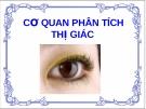 Bài giảng Cơ quan phân tích thị giác
