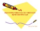 Bài giảng Đại cương virus và các virus gây bệnh thường gặp - GV. Lại Tiến Thành
