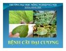 Bài giảng Bệnh cây đại cương: Phần I - ĐH Nông nghiệp Hà Nội