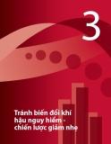 Chương 3: Tránh biến đổi khí hậu nguy hiểm chiến lược giảm nhẹ