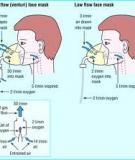 Cơ sở sinh lý học của oxy liệu pháp