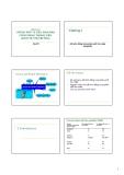 Bài giảng Kinh tế công cộng: Phần 3 - Lý Hoàng Phú