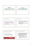 Bài giảng Kinh tế công cộng: Phần 2 - Lý Hoàng Phú