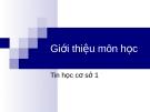 Bài giảng Tin học cơ sở: Bài 0 - Trần Thị Minh Châu