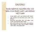 Bài giảng Luật lao động - Chương 1: Khái niệm và nguyên tắc cơ bản của pháp luật lao động Việt Nam