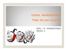 Thuyết trình: Viral marketing Tiếp thị lan truyền
