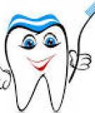 Bài giảng Phôi mô học và vấn đề di chuyển răng