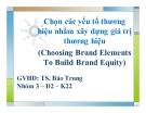Thuyết trình: Chọn các yếu tố thương hiệu nhằm xây dựng giá trị thương hiệu (Choosing Brand Elements To Build Brand Equity)