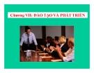 Bài giảng Quản trị nguồn nhân lực - Chương 7: Đào tạo và phát triển