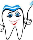 Một số định nghĩa, khái niệm, thuật ngữ giải phẫu răng - TS. Bùi Thanh Hải