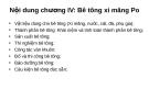 Bài giảng Vật liệu xây dựng: Chương IV - TS. Nguyễn Quang Phú