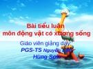 Bài tiểu luận môn Động vật có xương sống: Rắn độc Việt Nam và cách phòng tránh