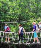 Khóa luận tốt nghiệp Văn hóa du lịch: Tìm hiểu hoạt động giao tiếp ứng xử của nhân viên phục vụ tại khách sạn Hữu Nghị