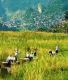 Khóa luận tốt nghiệp Văn hóa du lịch: Phát triển du lịch sinh thái tại vườn quốc gia Cát Bà