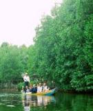 Khóa luận tốt nghiệp Văn hóa du lịch: Nghiên cứu, phát triển du lịch sinh thái tại khu du lịch Tràng An - Ninh Bình