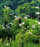 Khóa luận tốt nghiệp Văn hóa du lịch: Đánh giá tiềm năng phát triển du lịch sinh thái VQG Bái Tử Long
