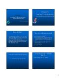 Bài giảng Pháp luật kinh doanh: Chuyên đề 6 - PGS.TS. Trần Văn Nam