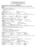 Đề thi Cao đẳng môn Tiếng Anh khối A1 & D năm 2014 (Mã đề 426)