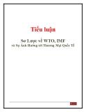 Tiểu luận: Sơ lược về WTO, IMF và sự ảnh hưởng tới thương mại quốc tế