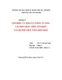 Tiểu luận Tài chính tiền tệ: Cổ phiếu ưu đãi của công ty con, lãi hợp nhất trên cổ phiếu và chi phí thuế TNDN hợp nhất