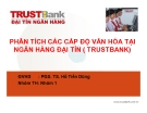 Thuyết trình: Phân tích các cấp độ văn hóa tại ngân hàng Đại Tín (Trustbank)